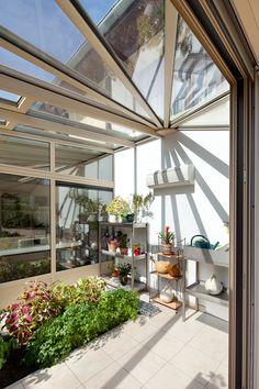 Plante veranda nord - veranda-styledevie.fr